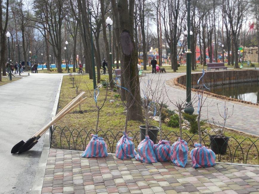 Make tree's, not war: в парке Горького высадили магнолии и миндаль, фото-1
