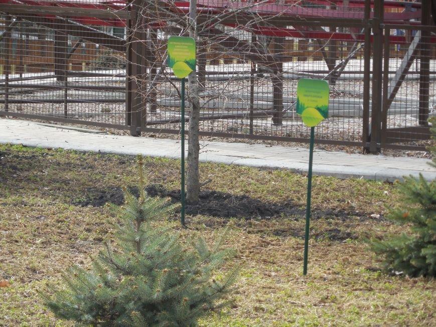 Make tree's, not war: в парке Горького высадили магнолии и миндаль, фото-7