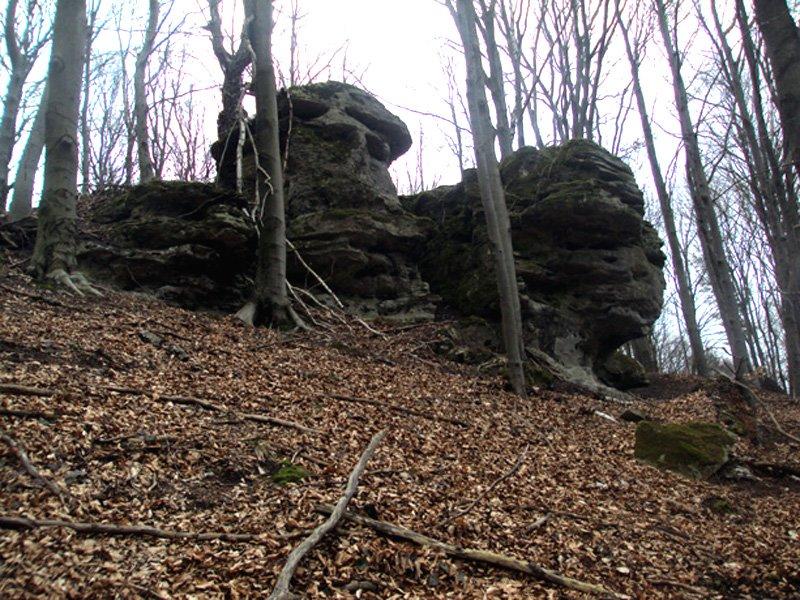 Залишки старих гір Вороняцького кряжу
