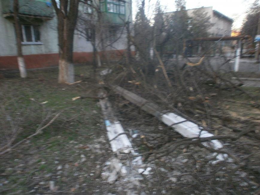 В Мариуполе штормовой ветер валил деревья и столбы (Фоторепортаж), фото-2