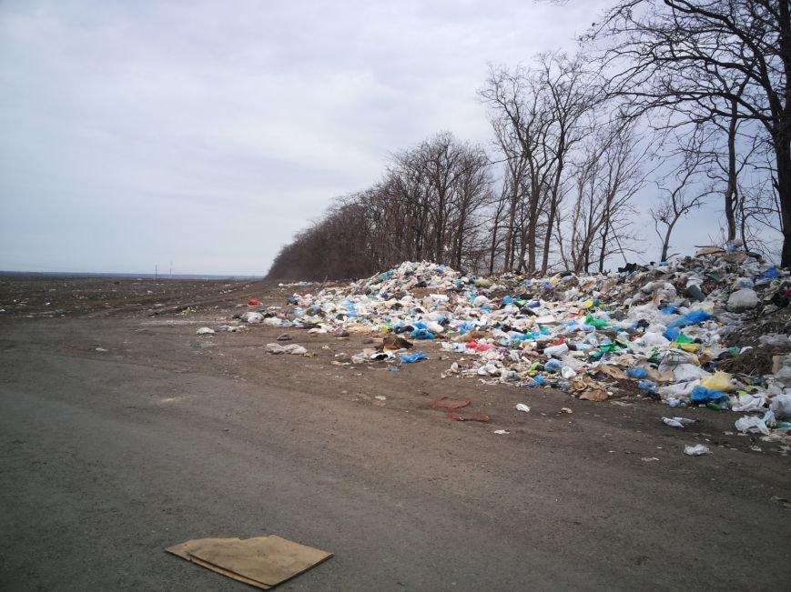 Под Мариуполем поля усеяны мусором (ФОТО+ВИДЕО+Дополнено), фото-1