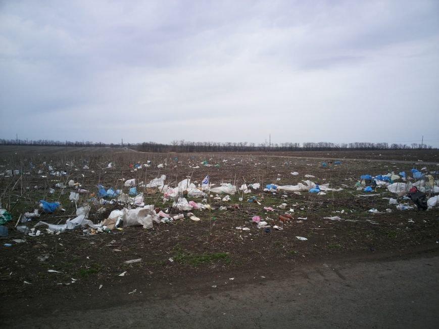Под Мариуполем поля усеяны мусором (ФОТО+ВИДЕО+Дополнено), фото-2