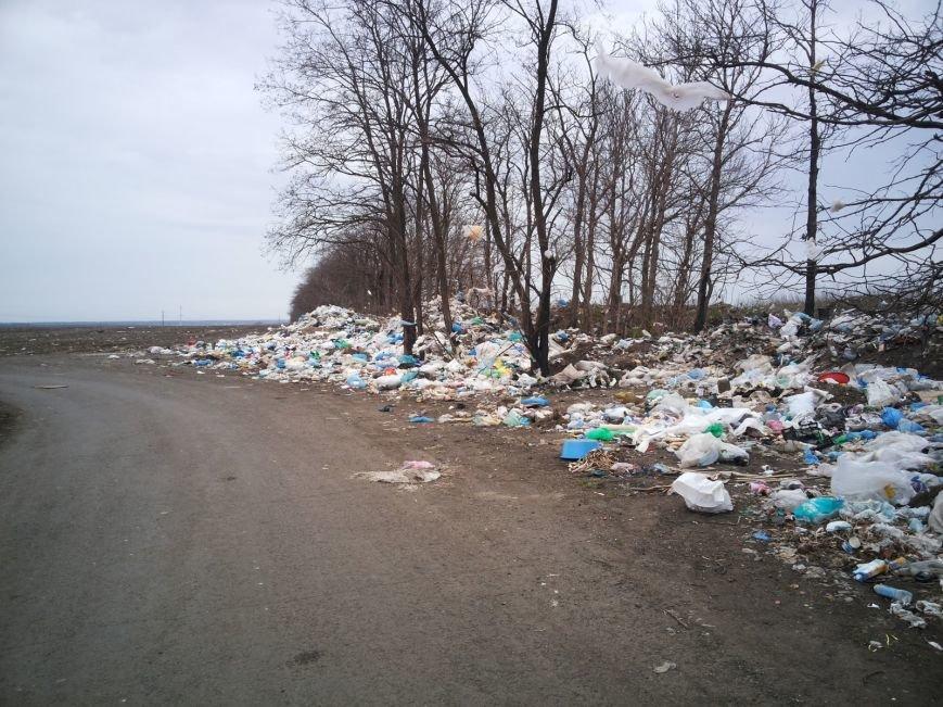 Под Мариуполем поля усеяны мусором (ФОТО+ВИДЕО+Дополнено), фото-3