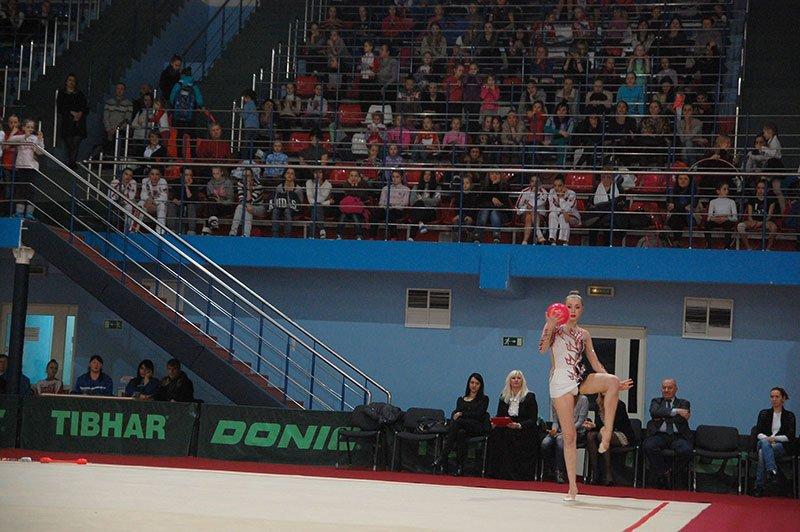 В Белгороде прошел чемпионат ЦФО по художественной гимнастике, фото-4