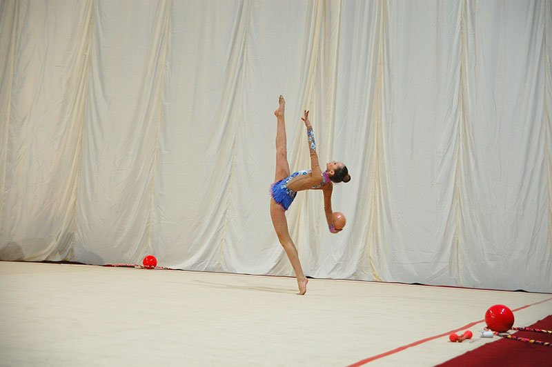 В Белгороде прошел чемпионат ЦФО по художественной гимнастике, фото-2