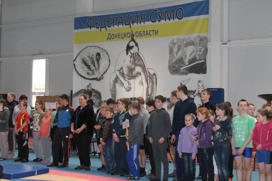 В Артемовске открыли Чемпионат Украины по сумо (ФОТО+ВИДЕО), фото-10