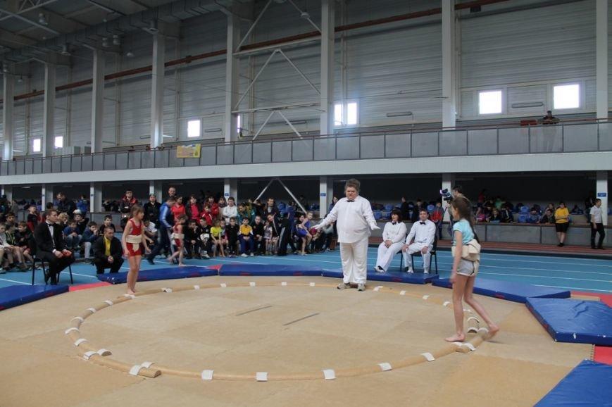 В Артемовске открыли Чемпионат Украины по сумо (ФОТО+ВИДЕО), фото-1
