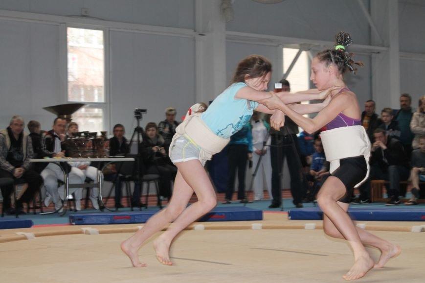 В Артемовске открыли Чемпионат Украины по сумо (ФОТО+ВИДЕО), фото-8