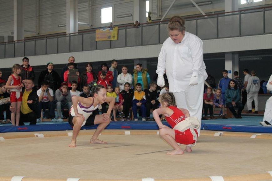 В Артемовске открыли Чемпионат Украины по сумо (ФОТО+ВИДЕО), фото-4