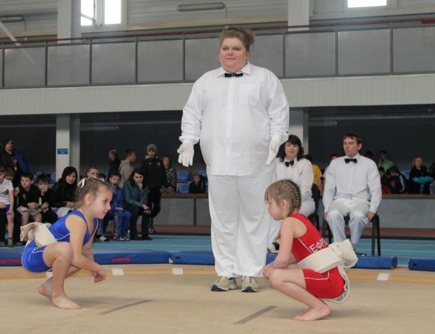 В Артемовске открыли Чемпионат Украины по сумо (ФОТО+ВИДЕО), фото-6