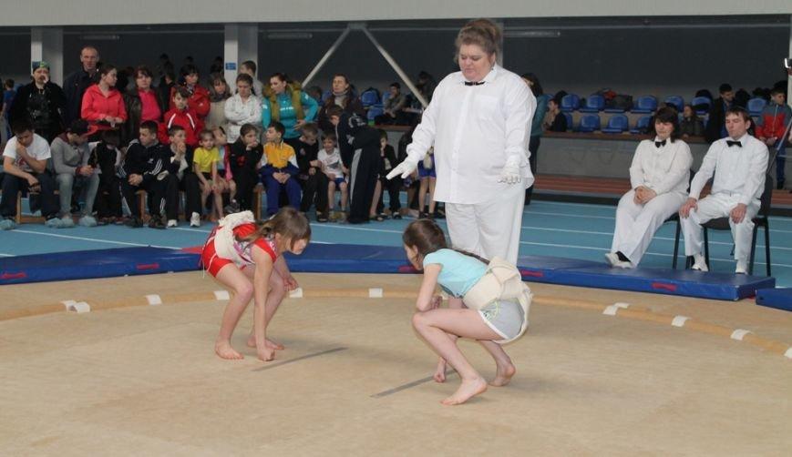 В Артемовске открыли Чемпионат Украины по сумо (ФОТО+ВИДЕО), фото-2