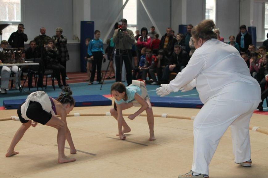 В Артемовске открыли Чемпионат Украины по сумо (ФОТО+ВИДЕО), фото-7