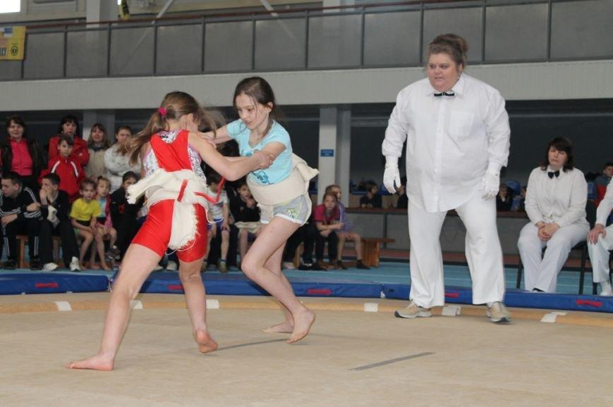 В Артемовске открыли Чемпионат Украины по сумо (ФОТО+ВИДЕО), фото-3