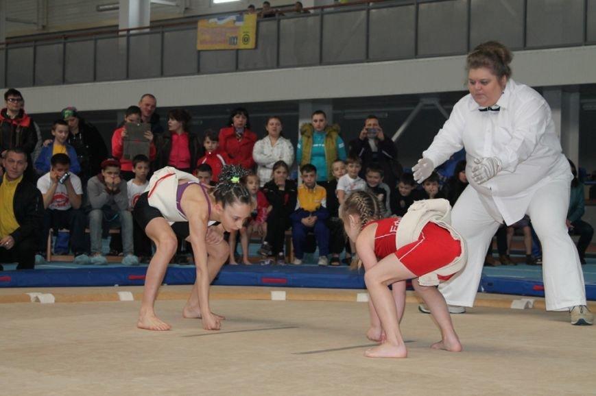 В Артемовске открыли Чемпионат Украины по сумо (ФОТО+ВИДЕО), фото-5