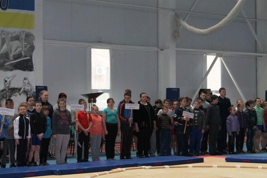 В Артемовске открыли Чемпионат Украины по сумо (ФОТО+ВИДЕО), фото-9