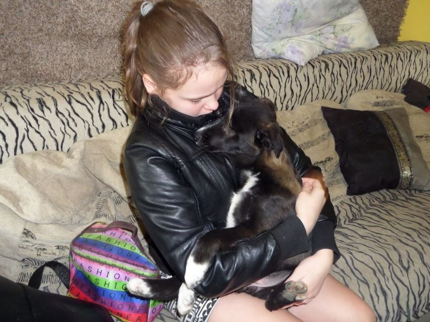 Настоящее чудо! Слепого щенка из Мариуполя спасла жительница Чехии (ФОТО), фото-3