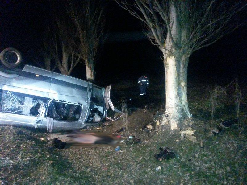 Шок! Под Мариуполем автобус врезался в дерево - 6 человек погибло, 12 - травмировано (ФОТО ВИДЕО), фото-9