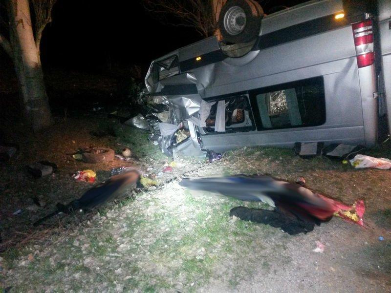 Шок! Под Мариуполем автобус врезался в дерево - 6 человек погибло, 12 - травмировано (ФОТО ВИДЕО), фото-5