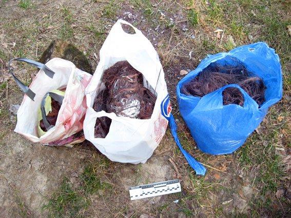 Наркоманы украли в Чернигове более 150 килограммов кабеля, фото-1