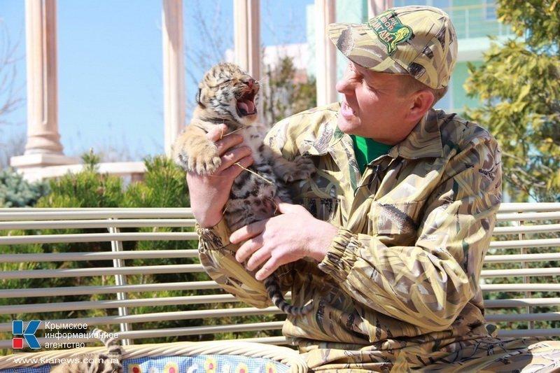 Родившегося в крымском сафари-парке тигренка назвали Референдумом (ФОТО), фото-5