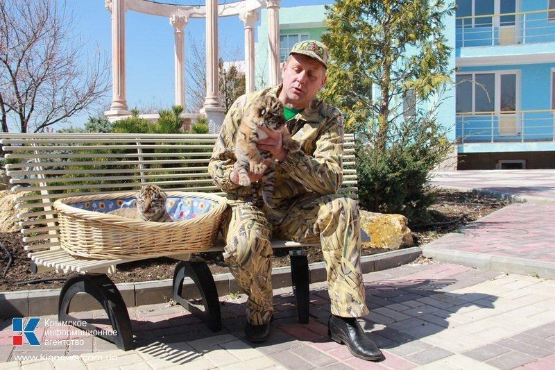 Родившегося в крымском сафари-парке тигренка назвали Референдумом (ФОТО), фото-4