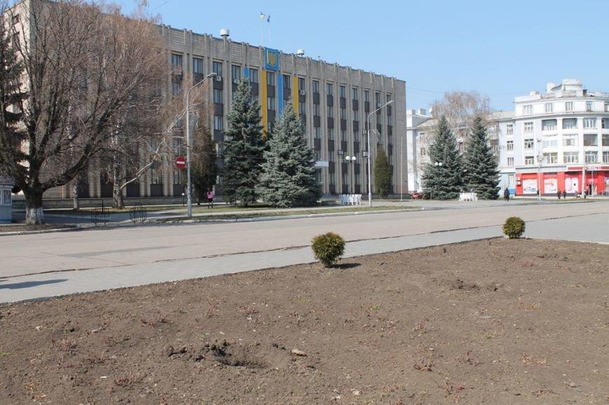 В Артемовске неизвестные украли шесть туй из центра города, фото-4