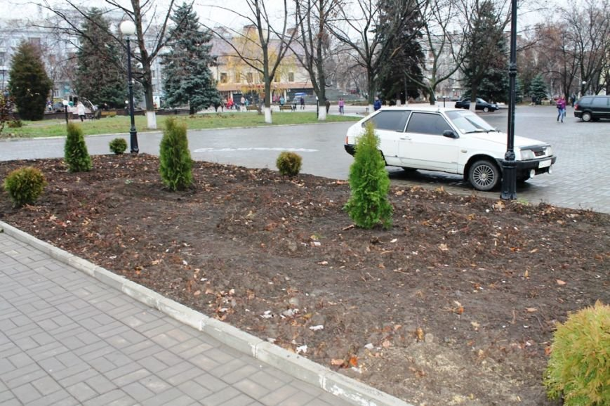 В Артемовске неизвестные украли шесть туй из центра города, фото-5