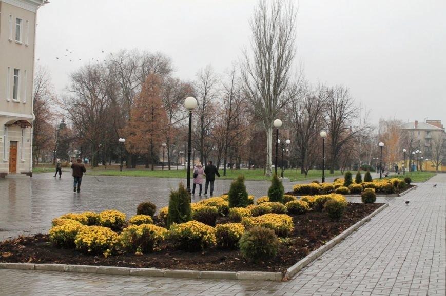 В Артемовске неизвестные украли шесть туй из центра города, фото-1