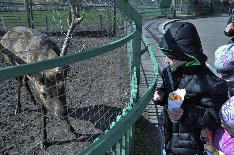В субботу белгородцы с «птичьими» фамилиями могут бесплатно сходить в зоопарк, фото-7