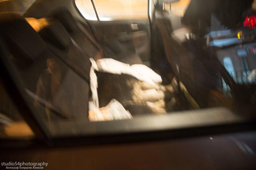 собака на заднем сидении