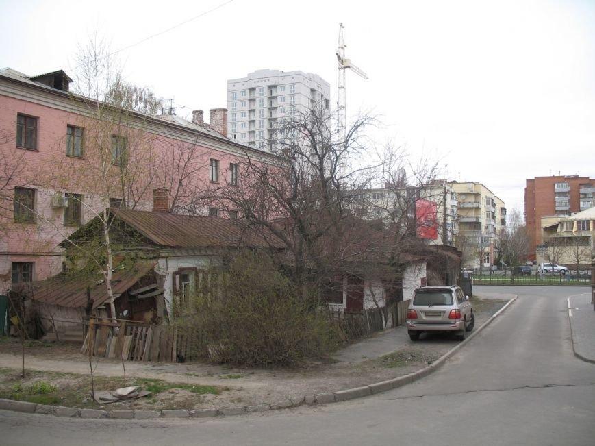 У самому центрі Полтави живе козеня (Фото), фото-2
