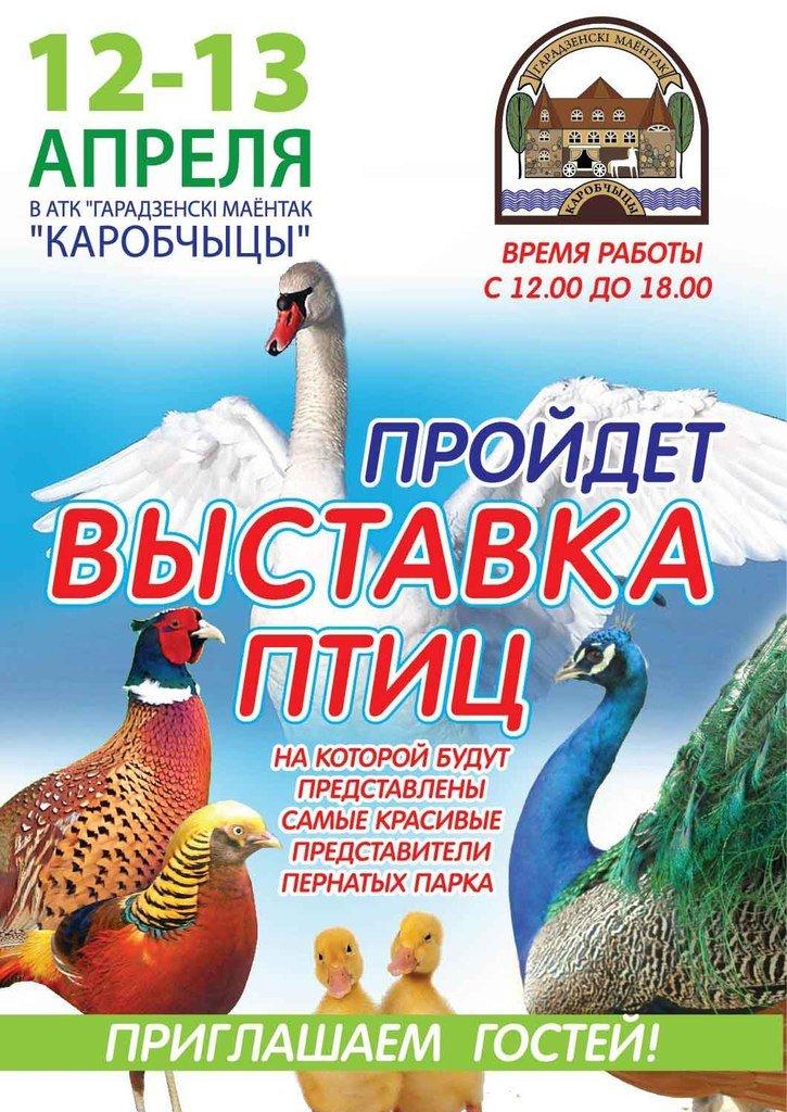 «Гарадзенскi маёнтак «Каробчыцы» 12-13 апреля проводит выставку птиц, фото-1