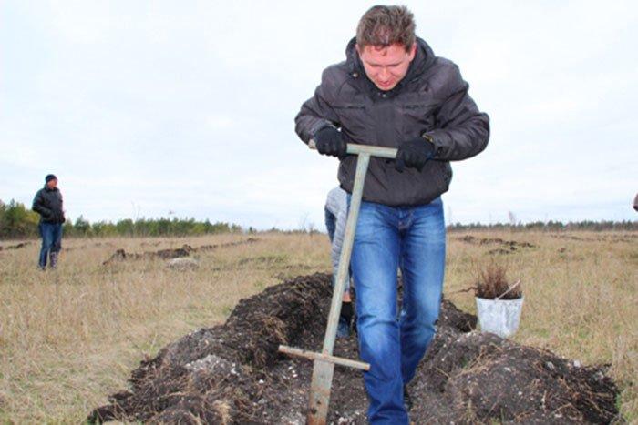 На прошедших выходных Евгений Савченко сажал дубы, а Сергей Боженов розы, фото-3