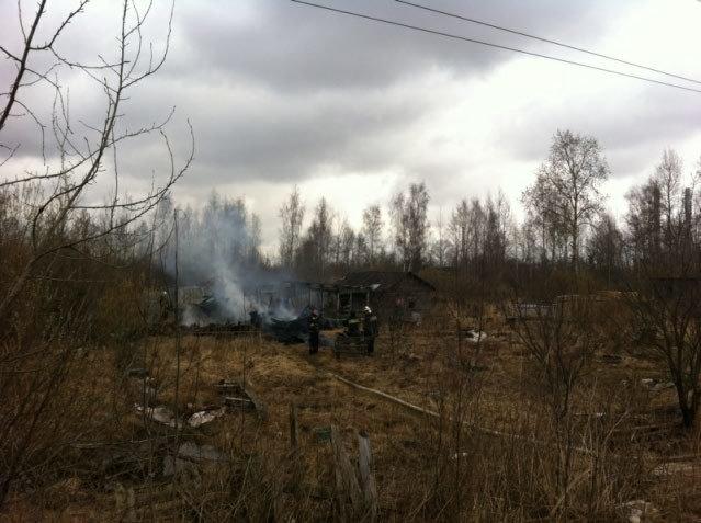 пожар, Славянка, Детскосельский, Пушкинский район, 11 14 апреля