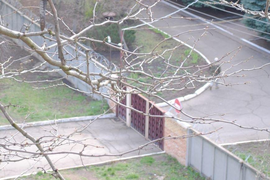 Новые фото захваченного здания СБУ Краматорска., фото-1