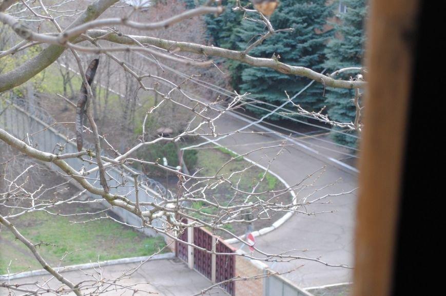 Новые фото захваченного здания СБУ Краматорска., фото-2