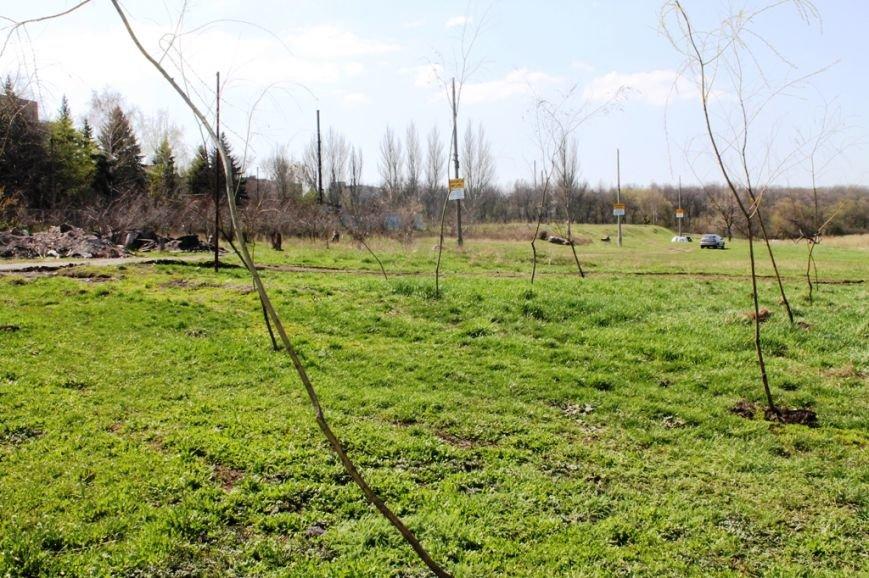 В Артемовске на берегу Северного ставка «высадился» трудовой десант (ФОТО), фото-7