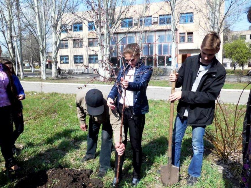 В Часов Яре выпускники провели акцию «Зеленый город» и высадили яблони (ФОТО), фото-3