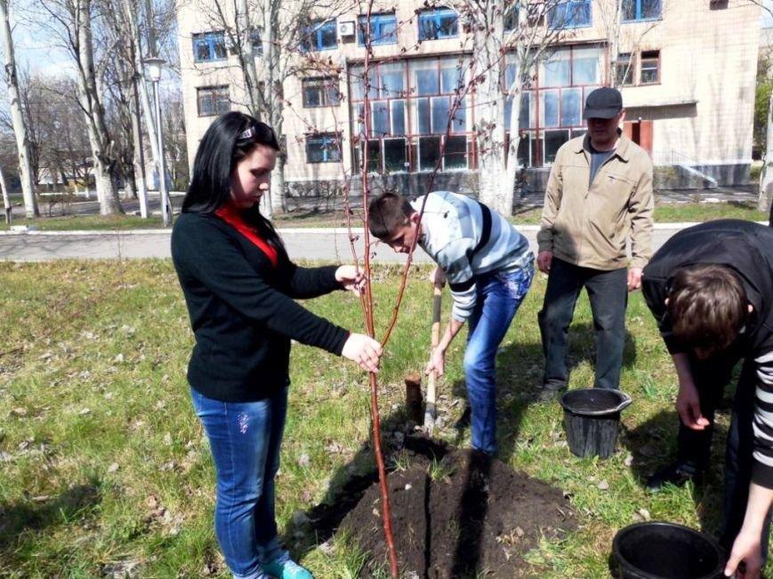 В Часов Яре выпускники провели акцию «Зеленый город» и высадили яблони (ФОТО), фото-6