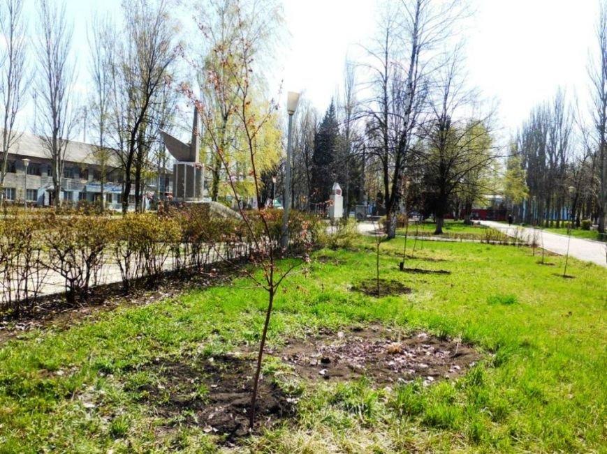 В Часов Яре выпускники провели акцию «Зеленый город» и высадили яблони (ФОТО), фото-8