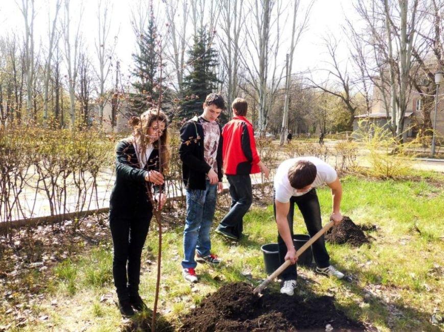 В Часов Яре выпускники провели акцию «Зеленый город» и высадили яблони (ФОТО), фото-7