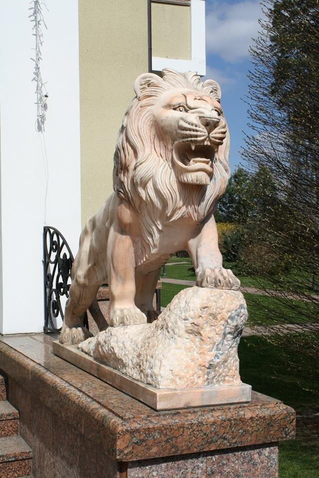 У маєтку Кучми є лев, ставок та теплиця з огірками (ФОТО) (ФОТО), фото-21