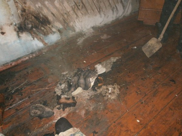 На Рівненщині за 3 вихідні рятувальники ліквідували 6 пожеж, фото-2