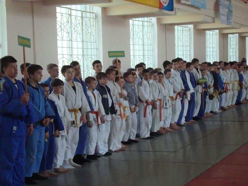 В Днепродзержинске состоялся Всеукраинский юношеский турнир по дзюдо, фото-2