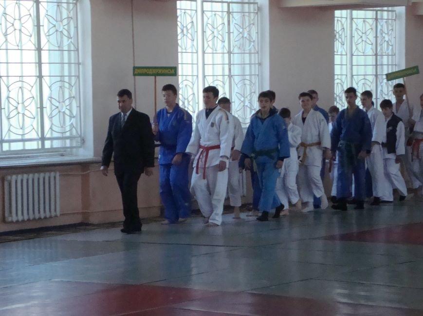 В Днепродзержинске состоялся Всеукраинский юношеский турнир по дзюдо, фото-1