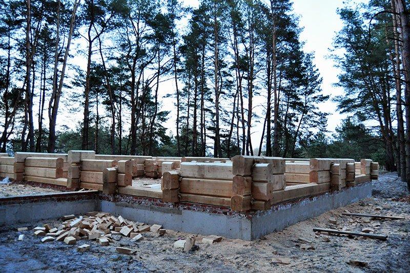 Лес в Нижнем Ольшанце:  Жители села собираются жаловаться президенту на власти и застройщиков, фото-3