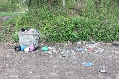 У тернопільському парку камера стежить за переповненим смітником (фото), фото-1