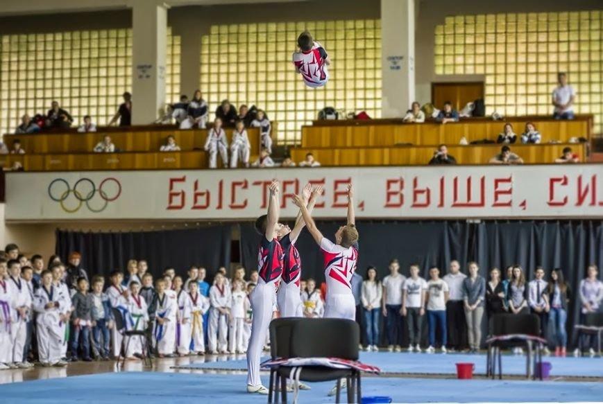 В Днепродзержинске состоялся чемпионат города по тхэквондо, фото-2