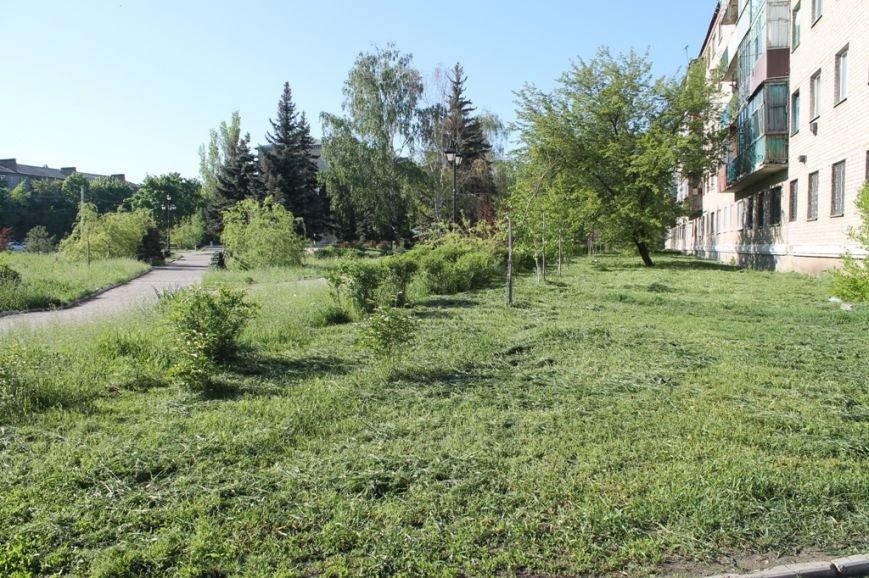 В Артемовске начался массовый покос травы. Горожан просят присоединиться, фото-2