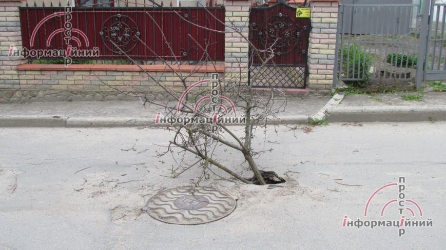 Славнозвісні тернопільські провалля повертаються (фото), фото-2